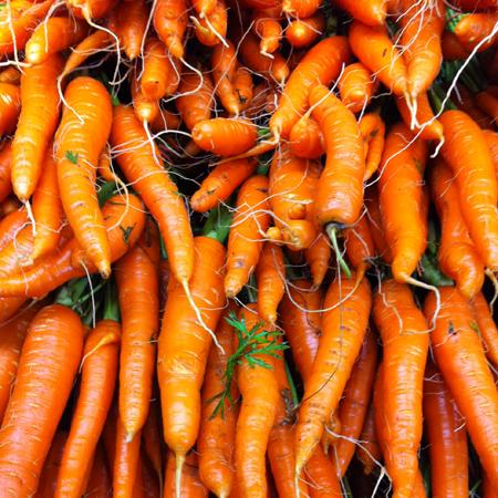 carrots_450 pixels
