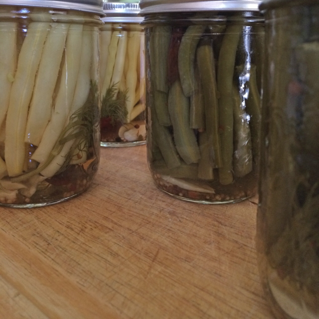 Pickled beans done_web