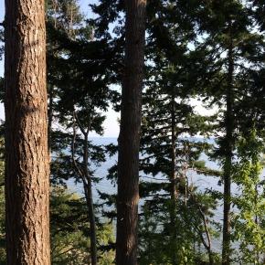 Hermit Trail_web